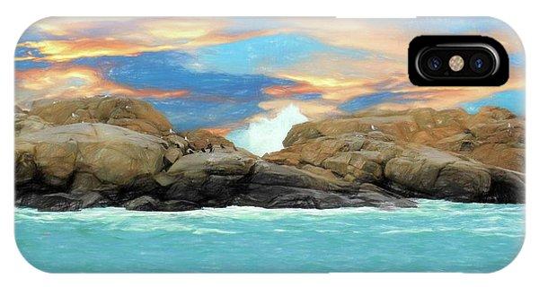 Birds On Ocean Rocks IPhone Case