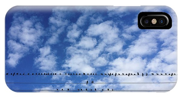 Birds On Wire IPhone Case