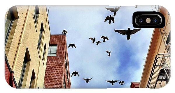 iPhone Case - Birds Overhead by Julie Gebhardt