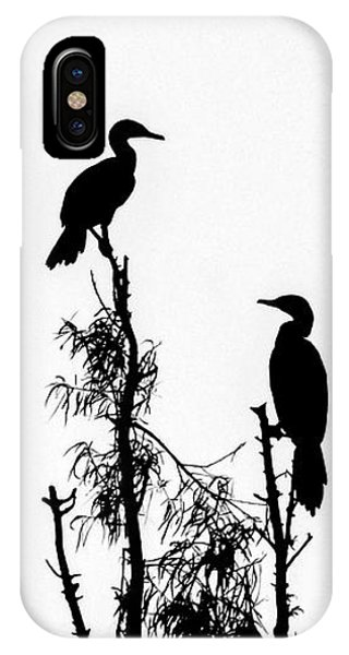 Birds Perched On Branches IPhone Case