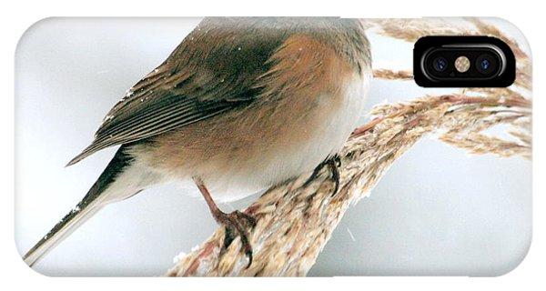 Birdsong IPhone Case