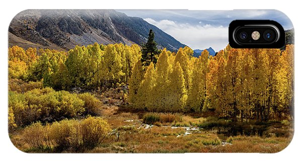 Bishop Creek Aspen IPhone Case