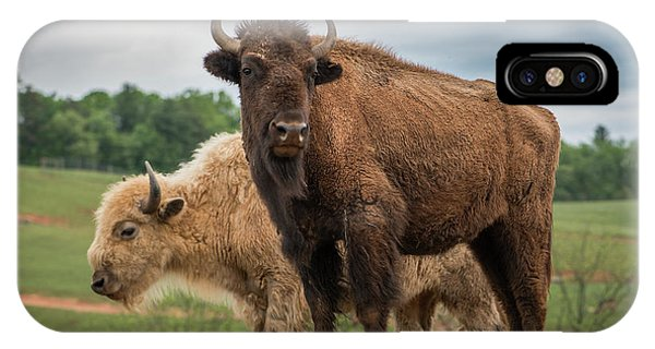 IPhone Case featuring the photograph Bison 10 by Joye Ardyn Durham