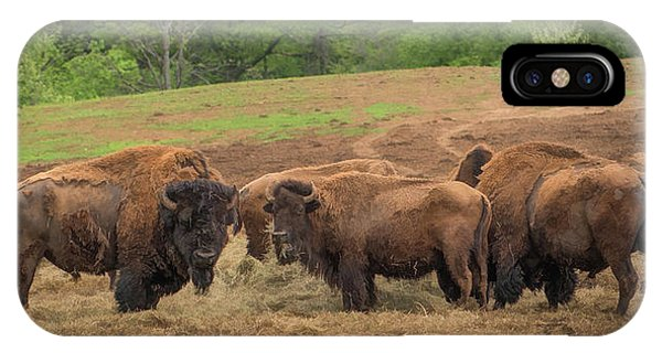 IPhone Case featuring the photograph Bison 2 by Joye Ardyn Durham