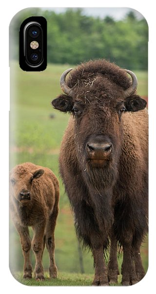 IPhone Case featuring the photograph Bison 4 by Joye Ardyn Durham