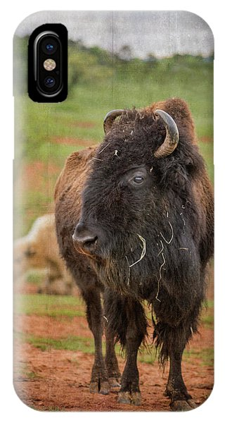 IPhone Case featuring the photograph Bison 5 by Joye Ardyn Durham