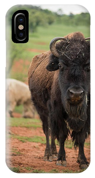 IPhone Case featuring the photograph Bison 6 by Joye Ardyn Durham
