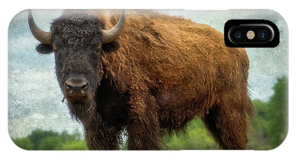 IPhone Case featuring the photograph Bison 9 by Joye Ardyn Durham