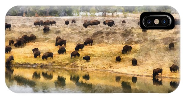 Bison At Indian Pond IPhone Case