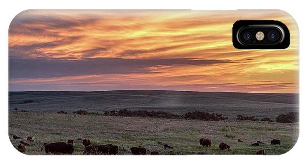 Bison At Sunrise IPhone Case