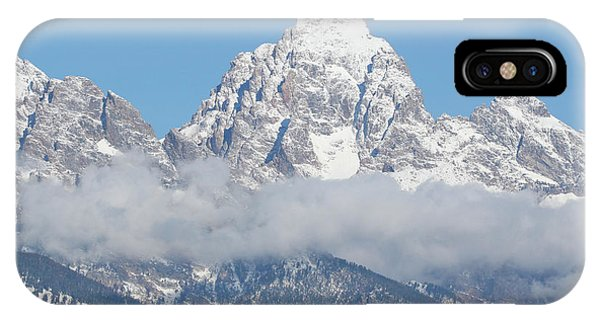 Bison In The Tetons IPhone Case