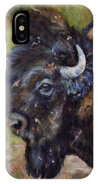 Bison Study 5 IPhone Case