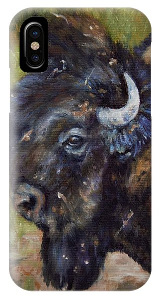 Bison Study 5 IPhone Case