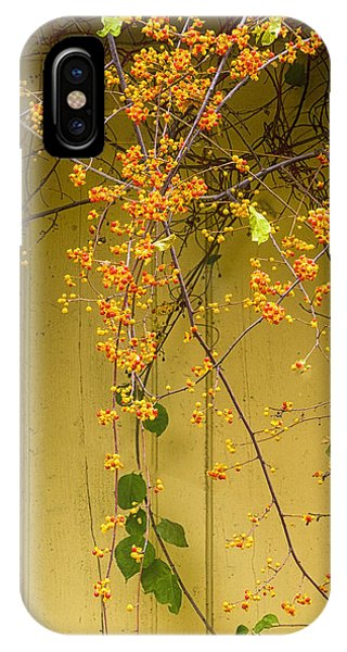 Bittersweet Vine IPhone Case