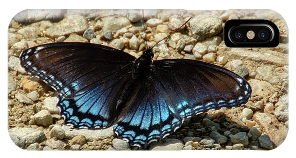 Black And Blue Monarch Butterfly IPhone Case