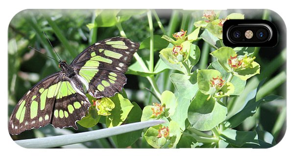 iPhone Case - Black And Green Butterfly by Kelly Holm