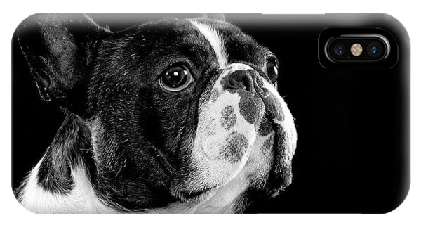 French Bull Dog iPhone Case - Black And White Bull Dog by Hugo Orantes