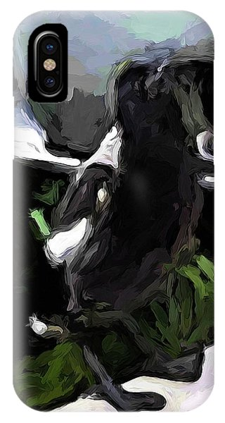 Black And White Magpie On The Porch IPhone Case