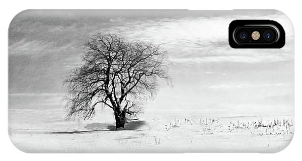 Black And White Tree In Winter IPhone Case