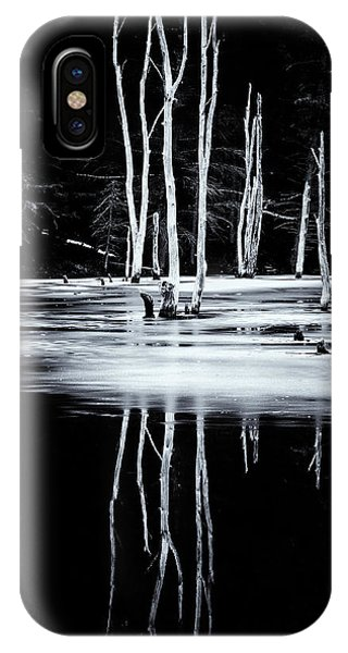 Black And White Winter Thaw Relections IPhone Case