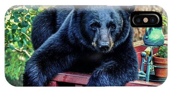 Black Bear - Chilled Out IPhone Case