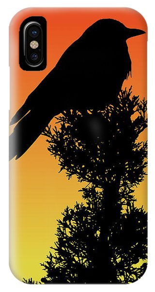 Black-billed Magpie Silhouette At Sunset IPhone Case