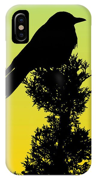 Black-billed Magpie Silhouette - Special Request Background IPhone Case