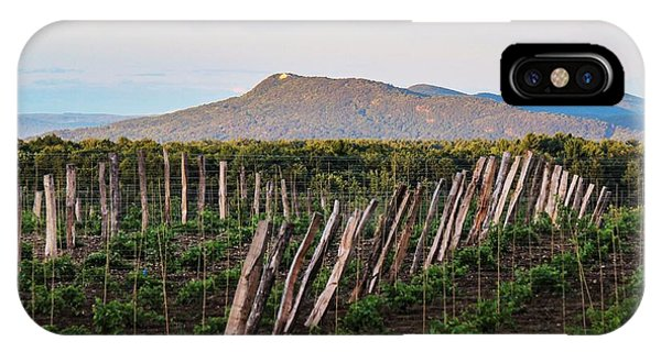 Black Birch Vineyard And Summit House View IPhone Case