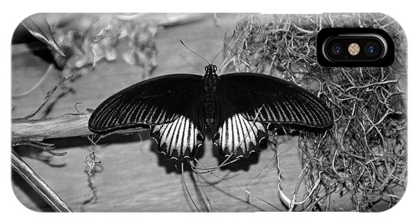 Black Butterfly In Black And White IPhone Case