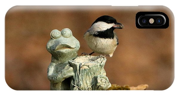 Black-capped Chickadee And Frog IPhone Case
