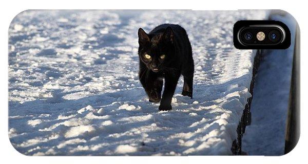 Black Cat In Snow IPhone Case