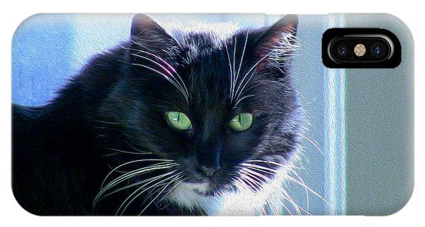 Black Cat In Sun IPhone Case
