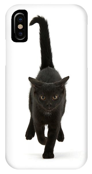Black Cat On The Run IPhone Case