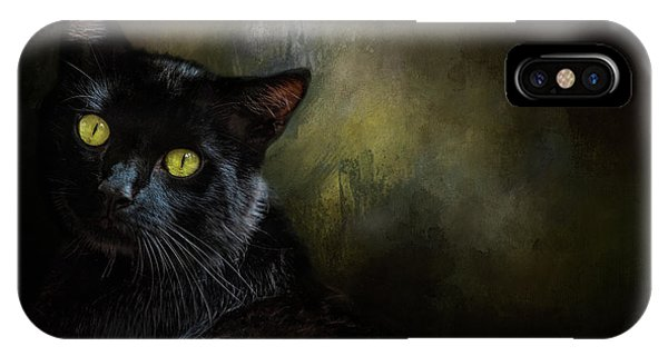 Black Cat Portrait IPhone Case