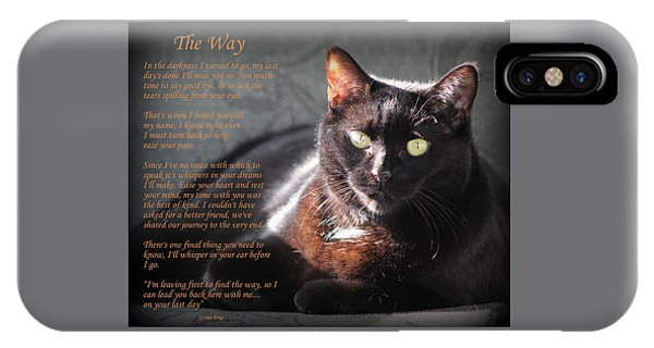Black Cat The Way IPhone Case