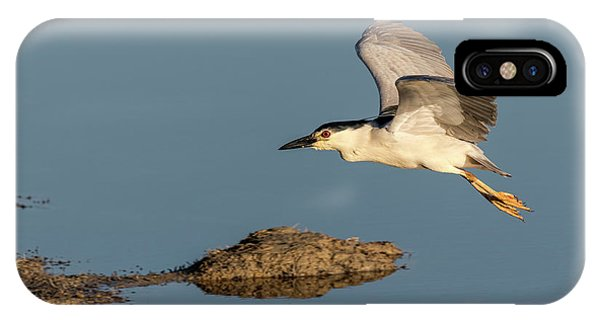 Horicon Marsh iPhone Case - Black-crowned Night Heron 2017-4 by Thomas Young
