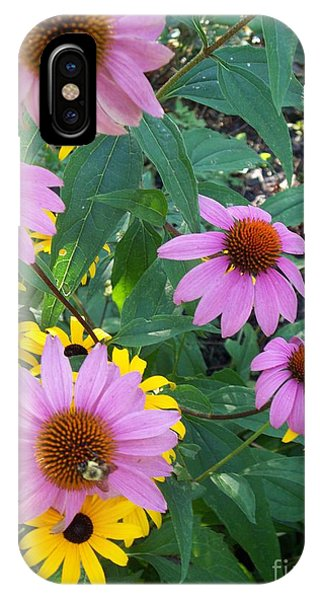 Black Eye Susans And Echinacea IPhone Case