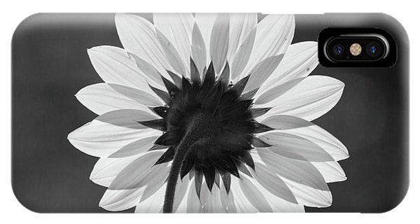 Black-eyed Susan - Black And White IPhone Case
