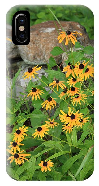 Black Eyed Susan IPhone Case