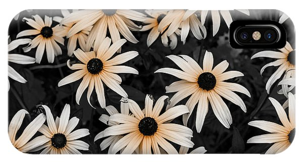 IPhone Case featuring the photograph Black Eyed Susan by Elena Elisseeva