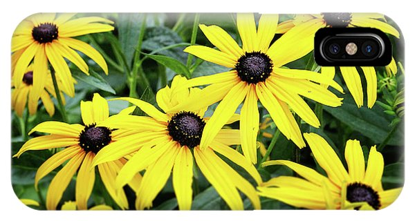 Daisy iPhone Case - Black Eyed Susans- Fine Art Photograph By Linda Woods by Linda Woods