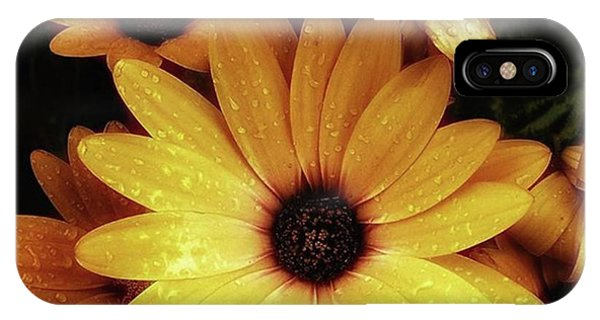 IPhone Case featuring the photograph Black Eyed Susans. Looks Like They're by Mr Photojimsf