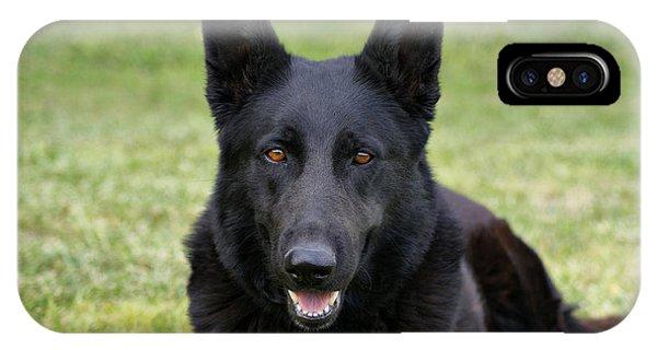 Black German Shepherd Dog II IPhone Case