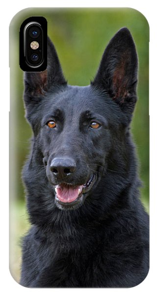 Black German Shepherd Dog IPhone Case