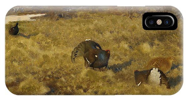 Swedish Painters iPhone Case - Black Grouse Displaying by Bruno Liljefors