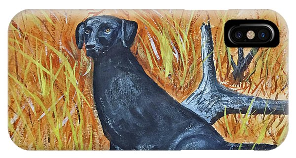 IPhone Case featuring the painting Black Lab-2 by Donald Paczynski