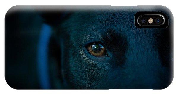 Black Lab Close Up IPhone Case