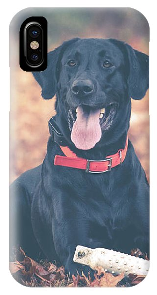 Black Labrador In The Fall Leaves IPhone Case