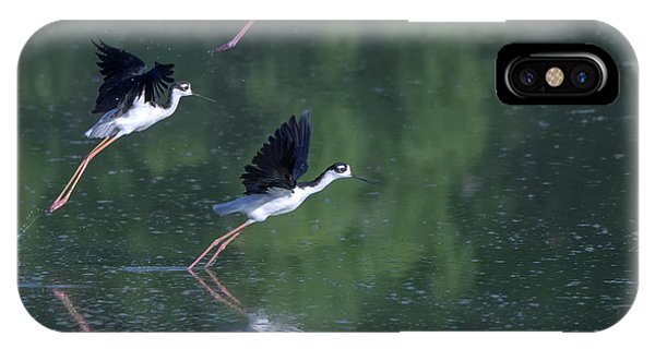 IPhone Case featuring the photograph Black-necked Stilts 4302-080917-2cr by Tam Ryan