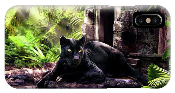 Black Panther Custodian Of Ancient Temple Ruins  IPhone Case